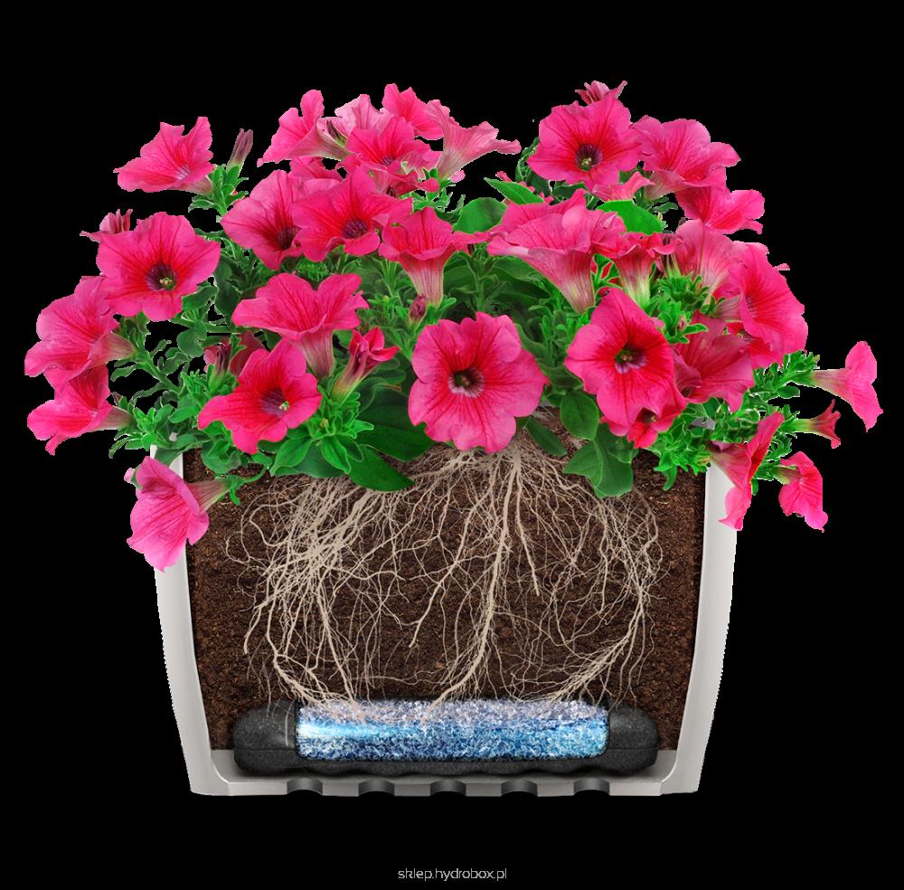 Oficjalny Sklep Internetowy Hydrobox Floral Wreath Floral Planter Pots