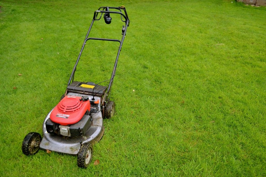 We are a local company that works with the best lawn care guys in ...