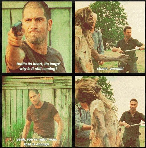 Shane had pretty much lost it at this point, but he was right and this scene was on point. Hershel and his family needed to see that. Shane tried to do the right things, and mostly his heart was in the right place, it was his execution that lacked.