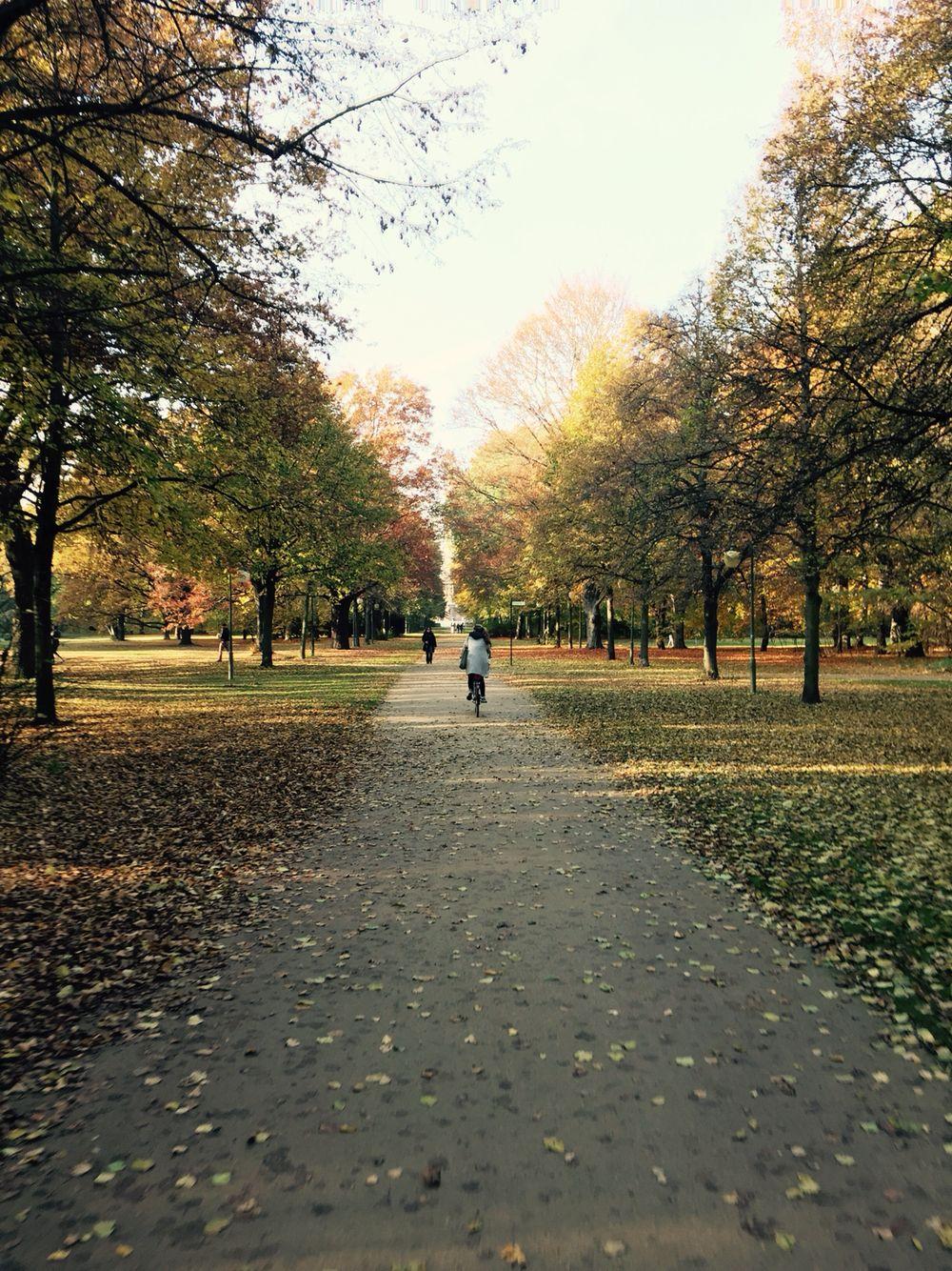 Fietsen door het park in Berlijn. Zo fantastisch mooi in de herfst