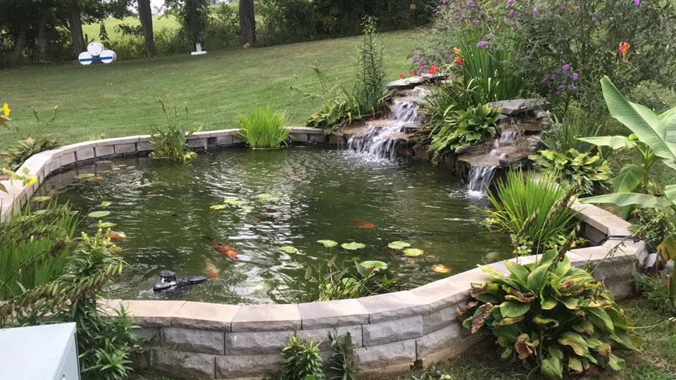 Raised pond | Raised pond, Pond landscaping, Ponds backyard on Raised Garden Ponds Ideas id=24562