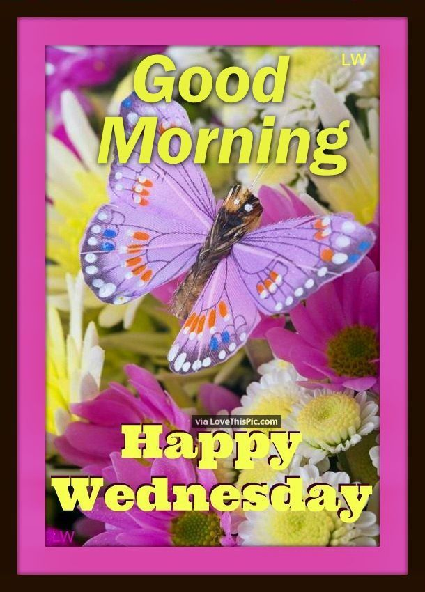 Good Morning Happy Wednesday Spring Quote | Good morning