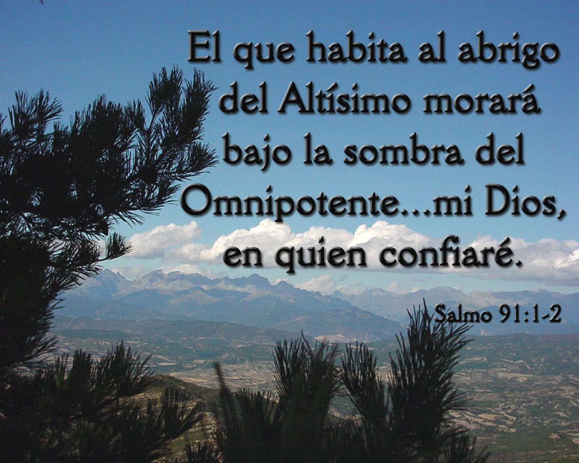 100 Imagenes Cristianas De Salmo 91 Confianza En Dios Salmo 91 Salmos Imagenes Cristianas