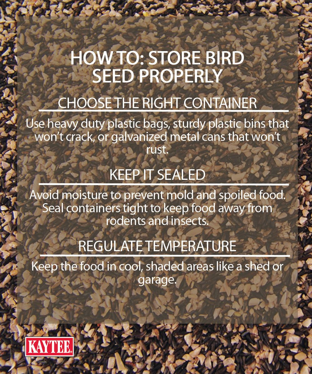 Backyard Birding Tip Make Sure Your Feed Is Stored Properly As The Snow Melts The Best Place To Have Your Bird Seed Wild Bird Feeders Wild Birds Food Animals