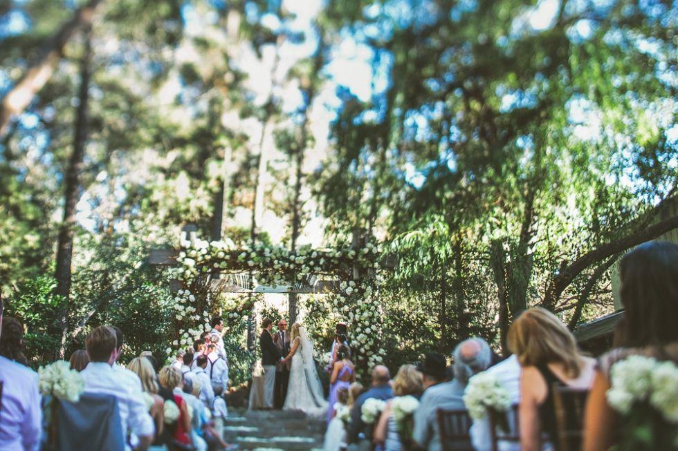 38+ Redwood forest wedding permit ideas in 2021