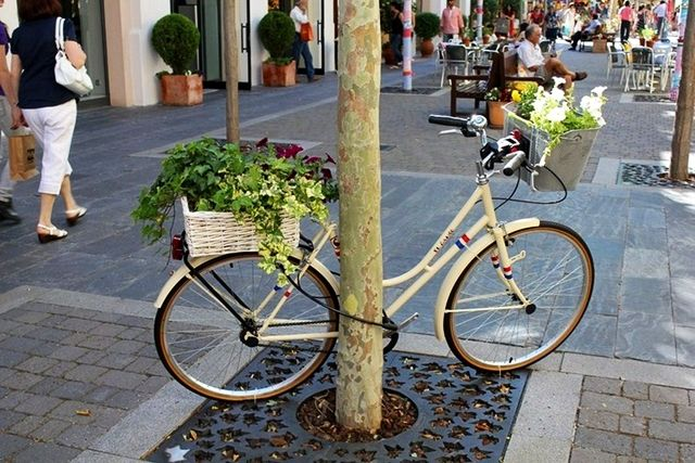 Green in a bike!
