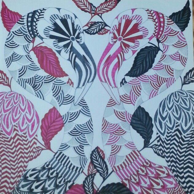 Pink/black flamingos. Millie Marotta | Millie marotta ...