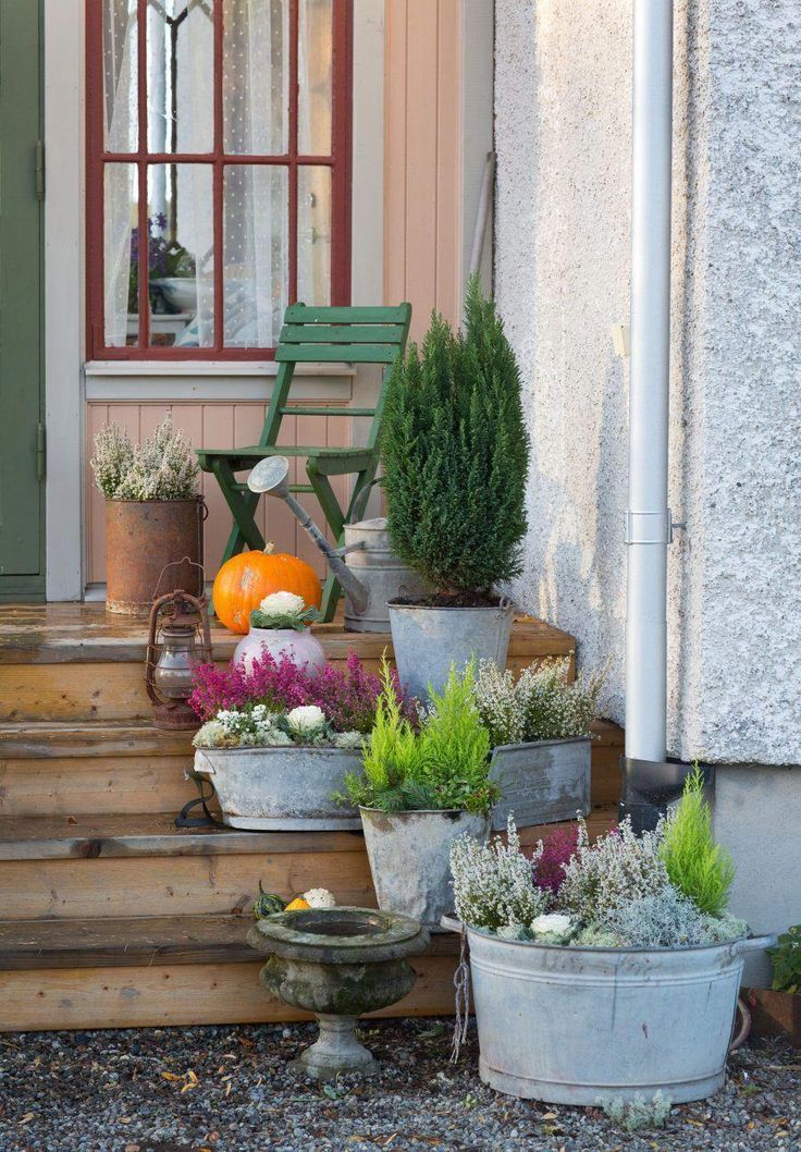 Winterplantagen auf der Terrasse / Terrassendekorationen im Winterstil #patioplants