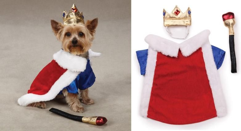 Royal Pup Dog Costume King Costume For Dogs King Costume Pet