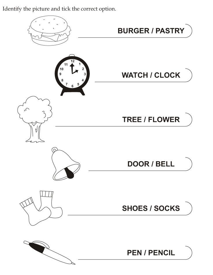 Download English Activity Worksheet Identify The Picture And Tick The Correct Option From Bestcolo English Activities Reading Worksheets Preschool Lesson Plans