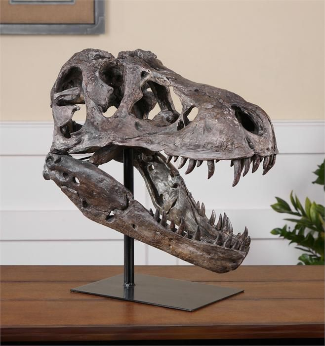 Everyone Loves Dinosaurs Don T They Available By Special