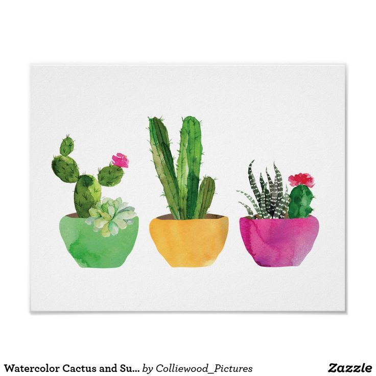 Watercolor Cactus and Succulent Print | Zazzle.com -   17 indoor plants Watercolor ideas