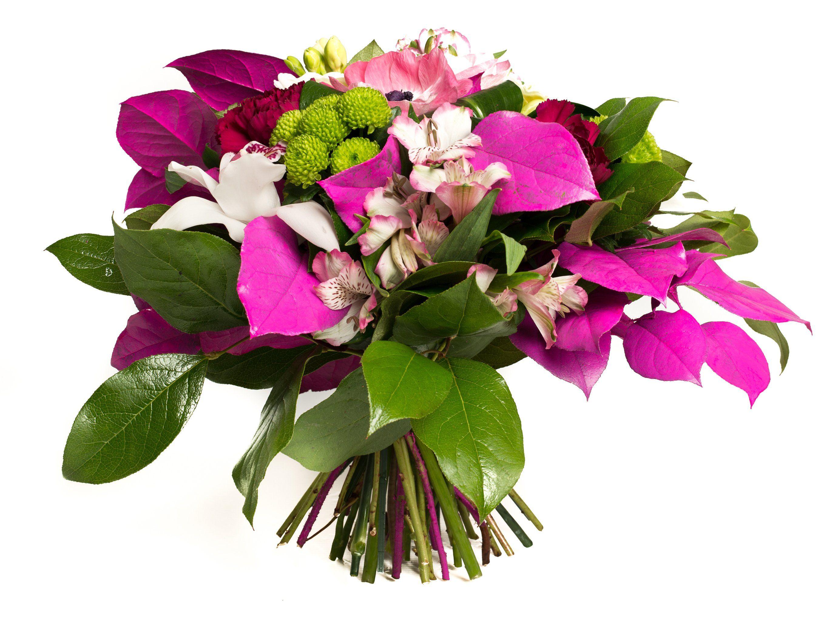 """Bouquet De Fleur Pour St Valentin résultat de recherche d'images pour """"telecharger fleur d"""