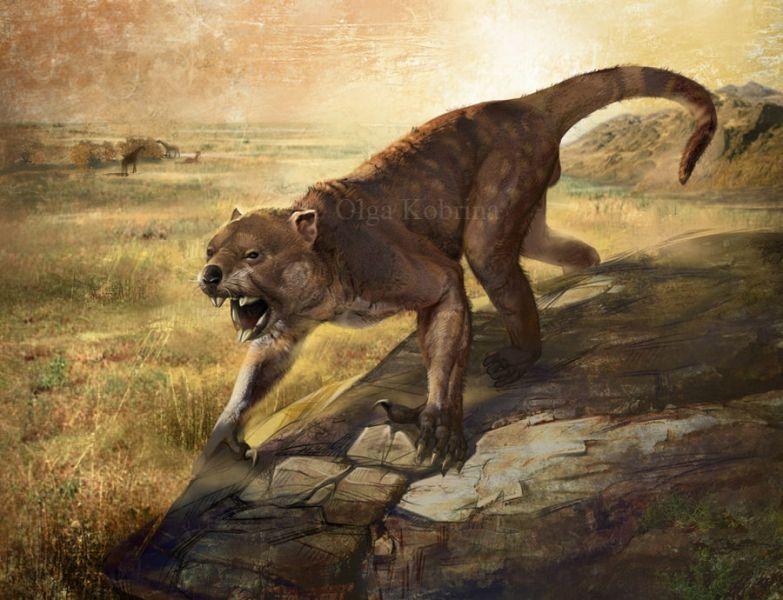 Самое древнейшее животное картинки