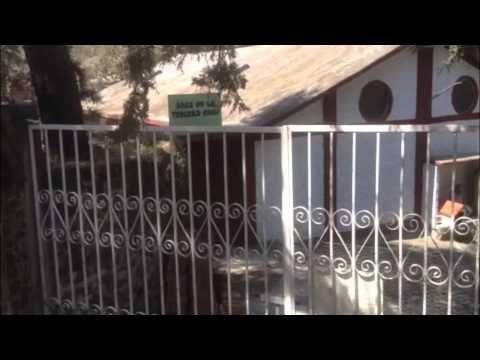 Un video del problems que perros maltratados en Mexico y un refugio que trabaja para salvarlos.
