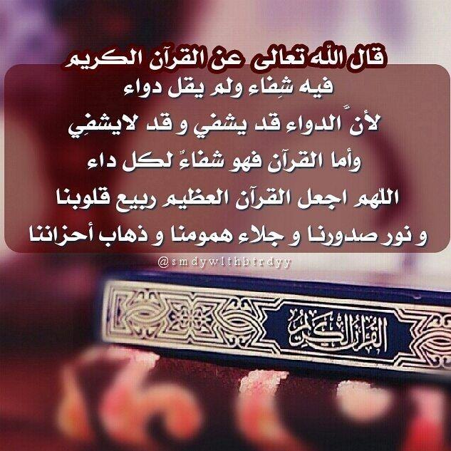 Thepug Holy Quran Quran Islam