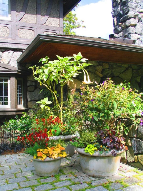 Pretty Patio Container Gardening Ideas