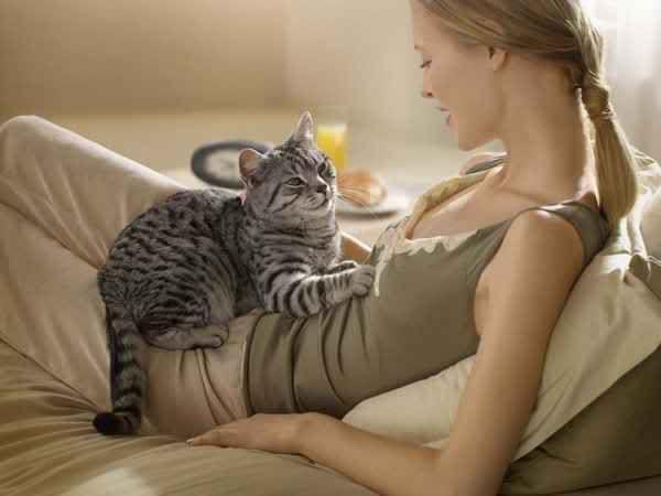 Картинки по запросу кошки и их хозяева