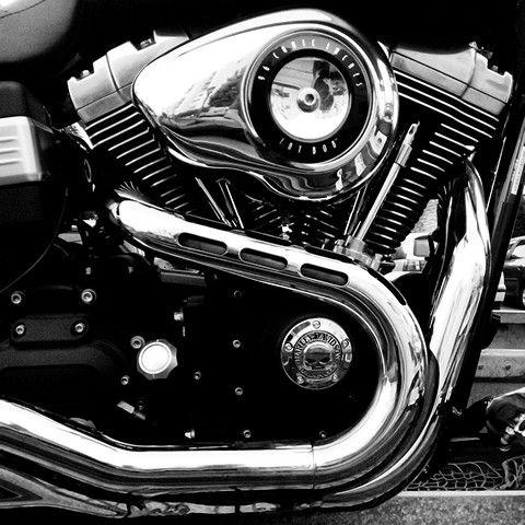 Fat Bob #photolanda #harleydavidson #motorcycle  #andalusia