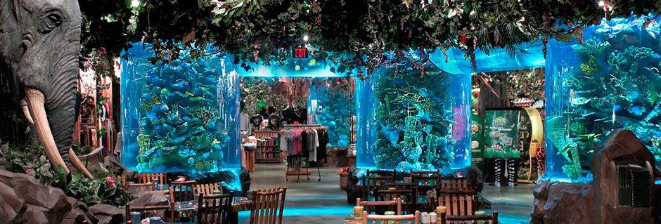 living colors aquarium