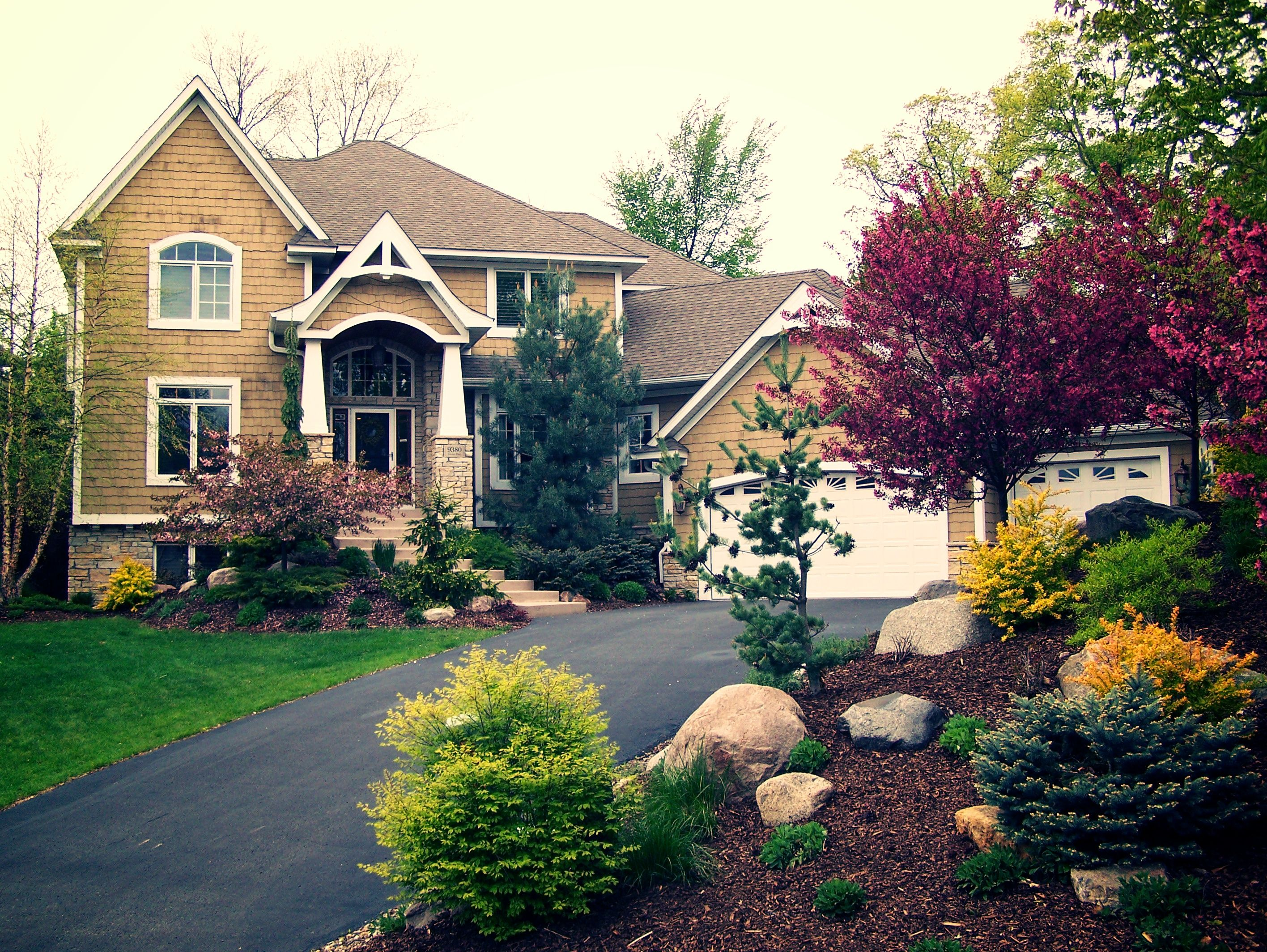 Colorful Trees For Landscaping Frontyard Landscapes 400 x 300