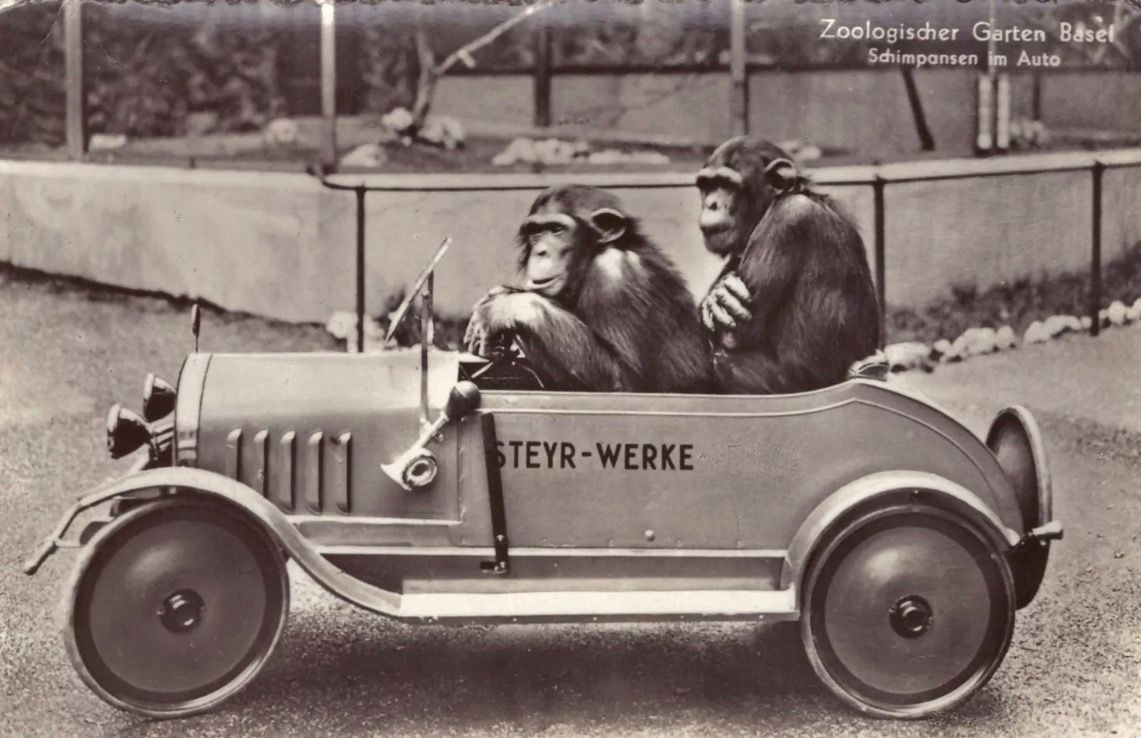 Hey Hey We Re The Monkeys Pedal Cars Vintage Pedal Cars Vintage Photos