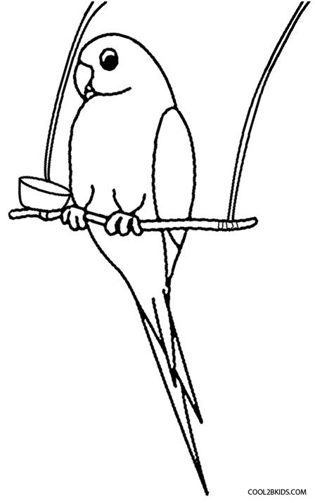 Parrot Coloring Pages Parrot Drawing Bird Coloring Pages