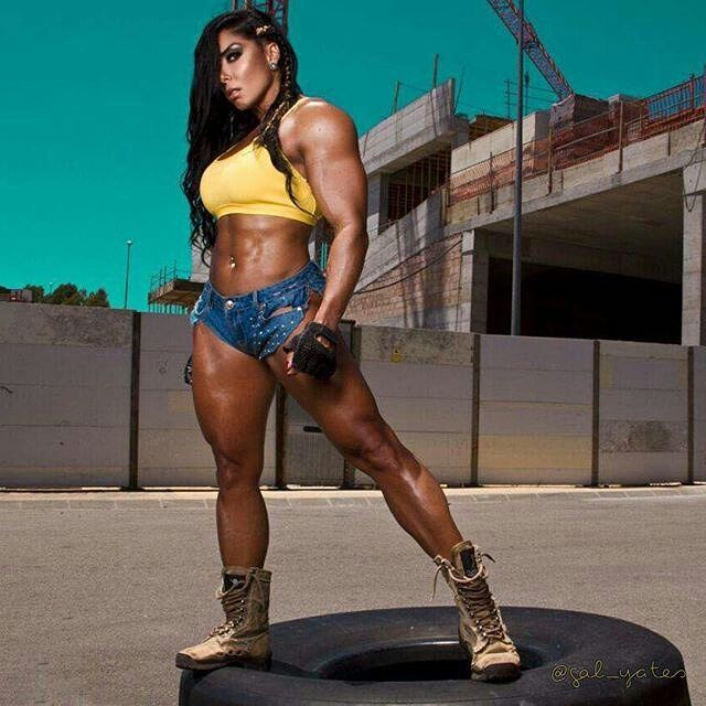 Single female bodybuilders
