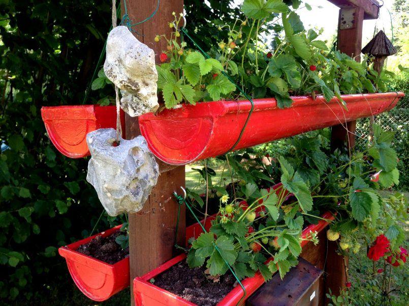 Garden Ideas Rain Gutter For Growing Strawberries Raingutterplanters Planters Planter Hardware Screws Foam Inserts Gutters Review Extra Large Strawberry Planters Planters Strawberry