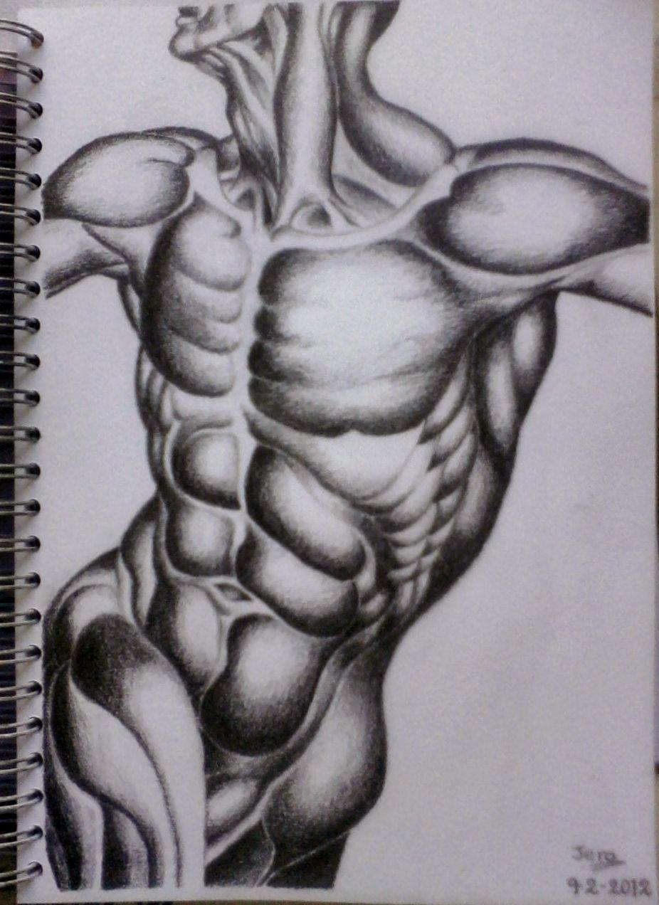 Dibujo A5 - Año 2012 Grafito B6 y potaminas. Anatomía masculina ...