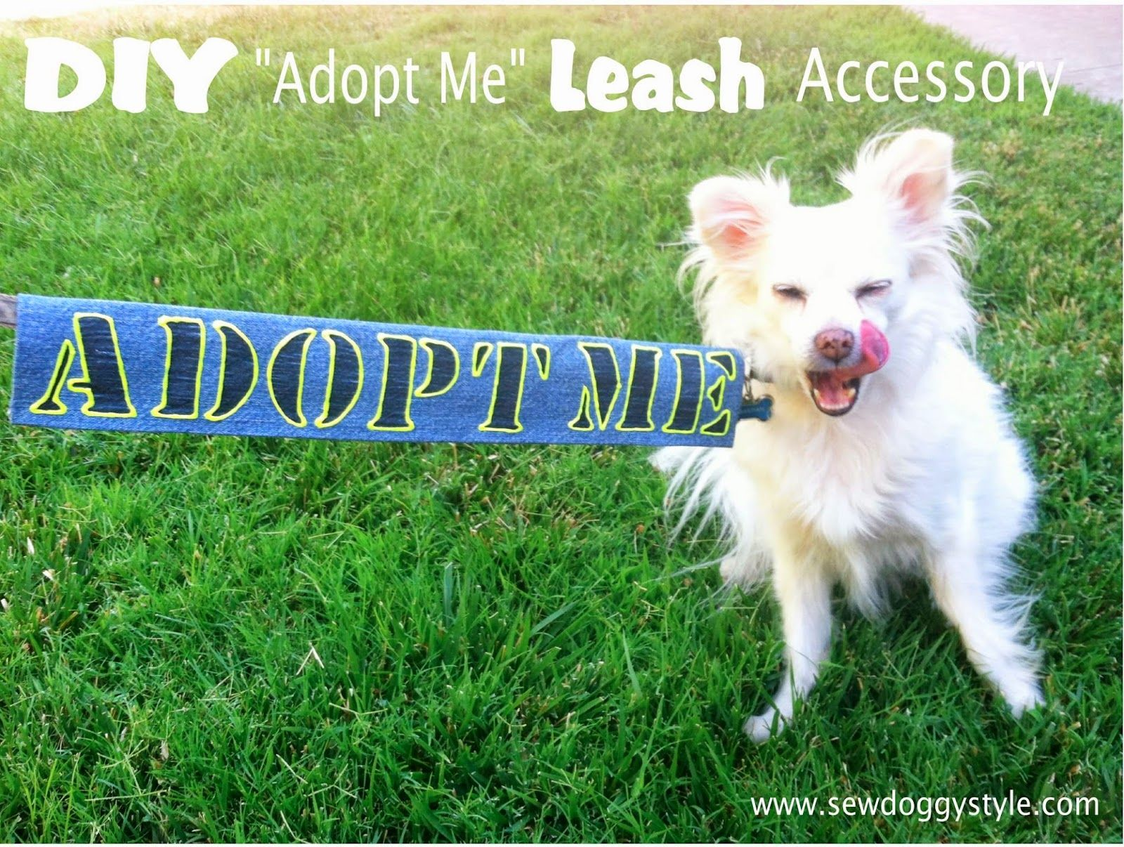 Diy Adopt Me Leash Accessory Animal Shelter Crafts Animal Shelter Volunteer Foster Dog