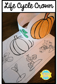 Pumpkin Life Cycle Crown #pumpkincraftspreschool