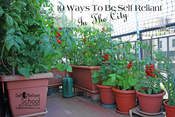 10 Ways To Be Self Reliant In The City – 1/17/16