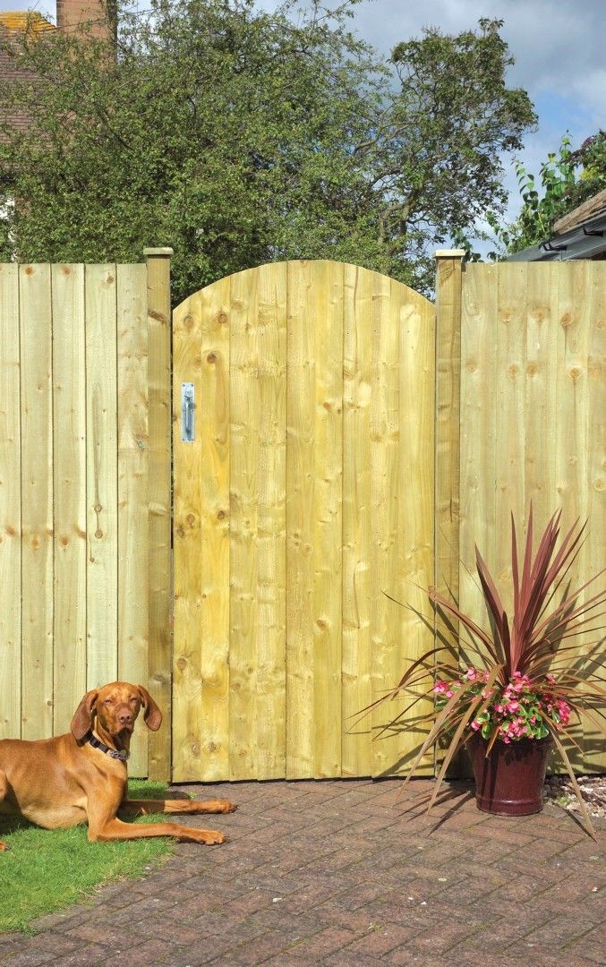 Garden Sheds Jewsons arched feather edge gate - gates & railings - fencing