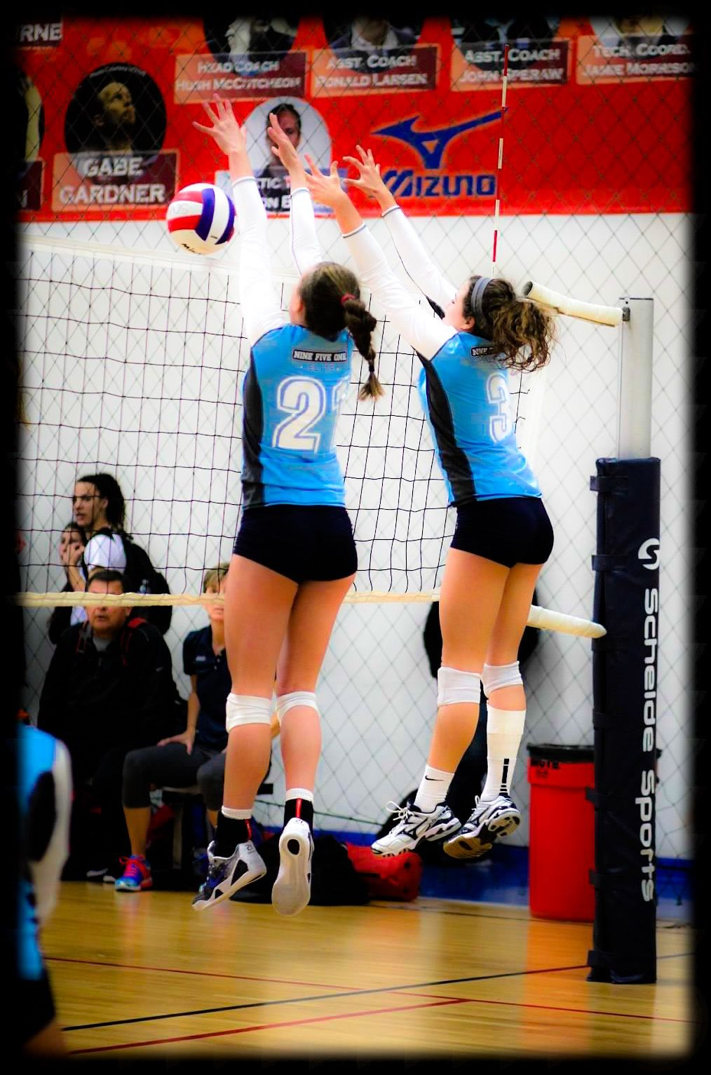 Pin By Wild Pepper Sports On Wild Pepper Clubs Sport Volleyball Volleyball Clubs Volleyball