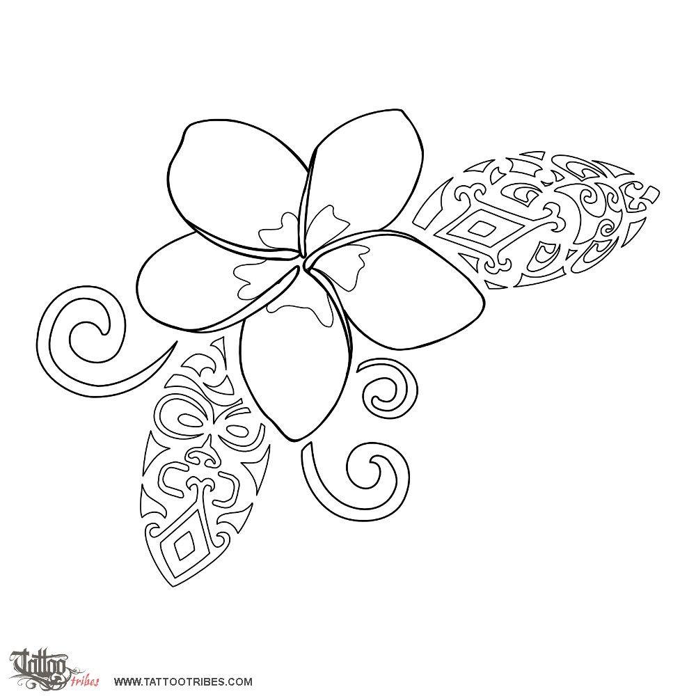 Plumeria Coloring Pages Polynesian Tattoo Frangipani Tattoo