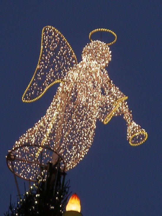 cristmas angel in germany dortmund winter christmas pinterest weihnachtsbaum dortmund der. Black Bedroom Furniture Sets. Home Design Ideas