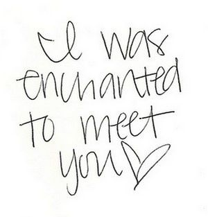 I Was Enchanted To Meet You Taylor Swift Lyrics Taylor Lyrics Taylor Swift Quotes