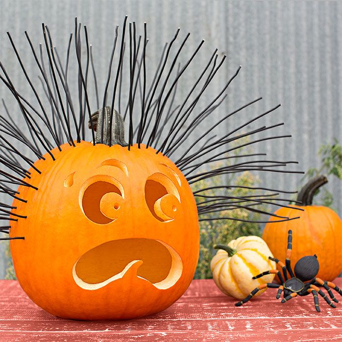 Hair Raising Pumpkin Gourds And Spider Experience Strands Of Black Electrical Wire Emanate 180 Degrees Emotion For A Scared Out