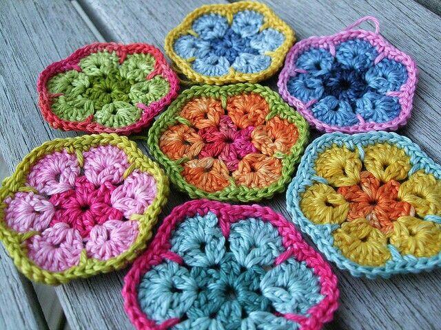 Rosetas de mucho colorido