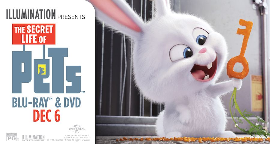 Own Secretlifeofpets On Blu Ray And Dvd Today Plus Giveaway Thesecretlifeofpets Petspack Ad Http Cartoon Wallpaper Secret Life Of Pets Pets Movie