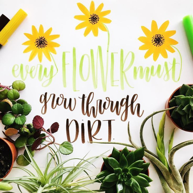 Handlettering by @paigefirnberg