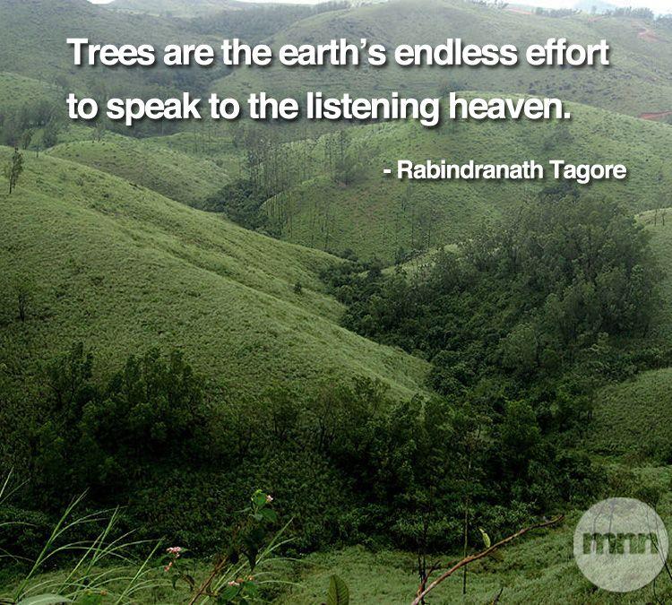 #naturequotes #tagore | Cool places to visit, Kerala ...