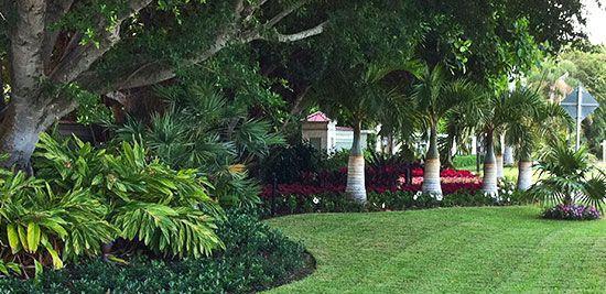 coastal south carolina landscaping ideas | Design Process Contact ...