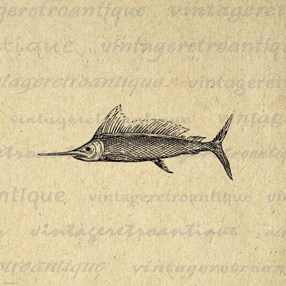 Digital Swordfish Image Vintage Swordfish Graphic Fish Illustration Antique Printable Fish Clip Art 0505