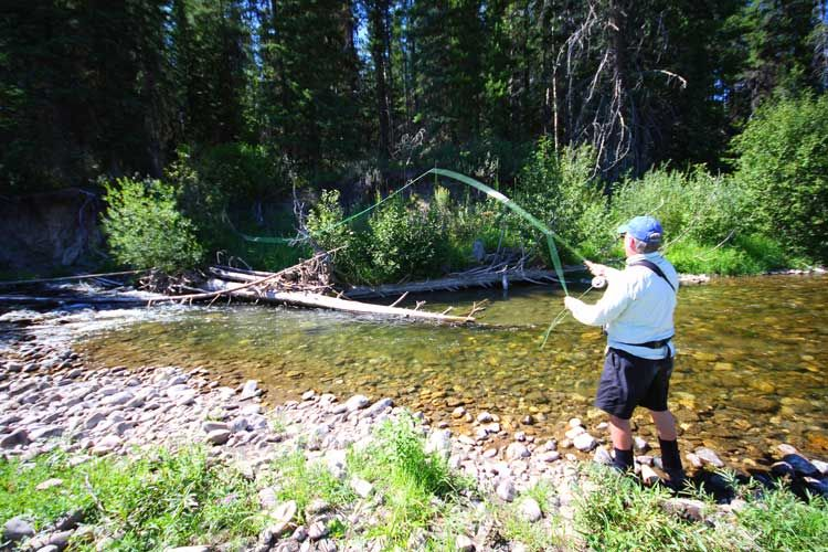 FlyFishing an Elk River Tributary Fly fishing, Catching