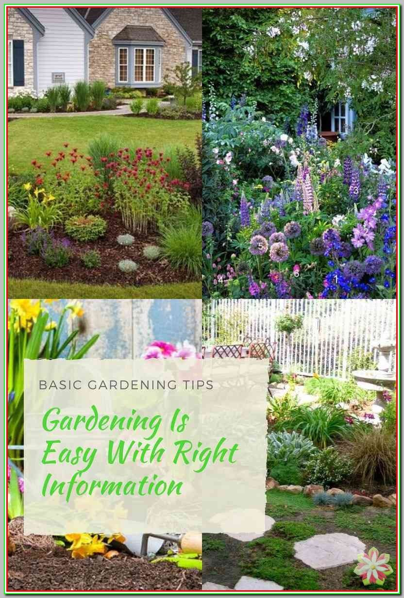 a83a9f93b90d087193cc8e328e055d3b - How Does Gardening Help The Environment