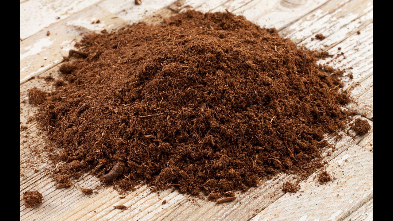 How to Use Soil AmendmentsSphagnum Peat Moss Bonsai