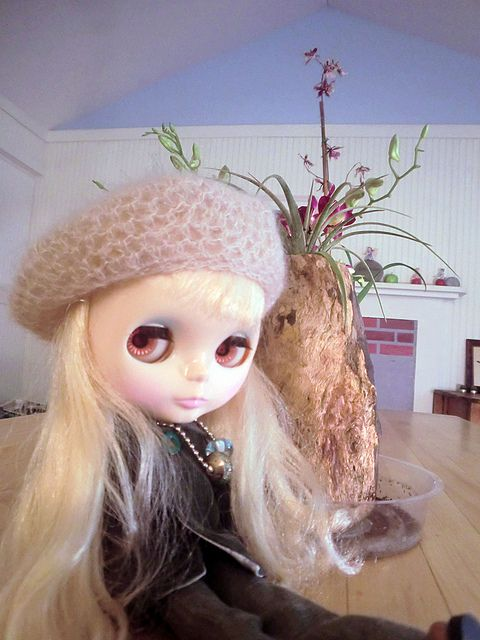 Aurora wanted to go out in the fall weather today! by jny_jeanpretty, via Flickr