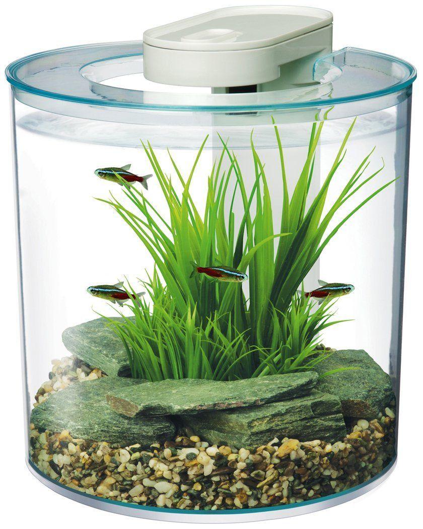 Fish tank supplies - Amazon Com Hagen Marina 360 Degree Aquarium Starter Kit Pet Supplies